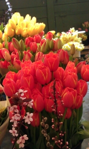 PIke Market Tulips 3-23-13