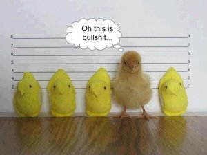 funny-Peeps-chick-police